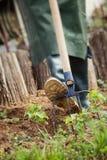 έννοια που κάνει την αρσενική εργασία άνοιξη κήπων Στοκ φωτογραφία με δικαίωμα ελεύθερης χρήσης