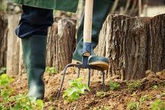 έννοια που κάνει την αρσενική εργασία άνοιξη κήπων Στοκ εικόνα με δικαίωμα ελεύθερης χρήσης