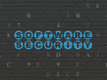 Έννοια προστασίας: Ασφάλεια λογισμικού στον τοίχο Στοκ Εικόνες