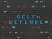 Έννοια προστασίας: Μόνος - υπεράσπιση στο υπόβαθρο τοίχων Στοκ Εικόνες