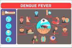 Έννοια πυρετού δαγκείου Μεταδιδόμενη με τα κουνούπια τροπική ασθένεια Infographic που παρουσιάζει τα διαφορετικές συμπτώματα και  ελεύθερη απεικόνιση δικαιώματος