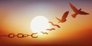 Έννοια της απελευθέρωσης με ένα περιστέρι που δραπετεύει με το σπάσιμο των αλυσίδων του, σύμβολο της φυλακής απεικόνιση αποθεμάτων