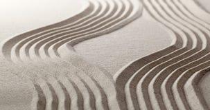 Έννοια της εξέλιξης προόδου ζωής με την τοποθέτηση zen Στοκ εικόνα με δικαίωμα ελεύθερης χρήσης