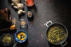 Έννοια της ινδικής κουζίνας με mung DAL στο σκοτεινό υπόβαθρο οριζόντιο Στοκ Εικόνα