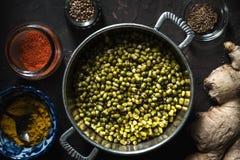 Έννοια της ινδικής κουζίνας με mung DAL τη τοπ άποψη Στοκ Εικόνα
