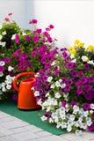 έννοια της κηπουρικής και του χόμπι Στοκ εικόνες με δικαίωμα ελεύθερης χρήσης