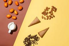 Έννοια της προετοιμασίας για το παγωτό με τα κουμκουάτ Κανάτα κρέμας, κουμκουάτ, δύο φλυτζάνια βαφλών, διεσπαρμένα φασόλια καφέ κ Στοκ εικόνα με δικαίωμα ελεύθερης χρήσης