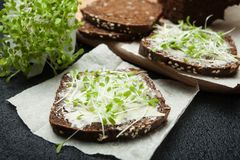 Έννοια της χορτοφάγου και υγιούς κατανάλωσης Ο μικροϋπολογιστής πρασινίζει τη σαλάτα και το μαύρο ψωμί στοκ εικόνα με δικαίωμα ελεύθερης χρήσης