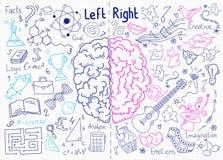 Έννοια του ανθρώπινου εγκεφάλου Στοκ εικόνες με δικαίωμα ελεύθερης χρήσης