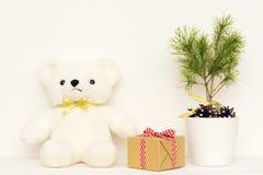 Έννοια του εσωτερικού ντεκόρ Άσπρος αντέξτε το παιχνίδι για το μωρό, κιβώτιο δώρων, δέντρο έλατου στο άσπρο δοχείο Στοκ Εικόνες