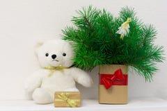 Έννοια του εσωτερικού ντεκόρ Άσπρος αντέξτε το παιχνίδι για το μωρό, κιβώτιο δώρων, δέντρο έλατου στο βάζο Στοκ Εικόνες