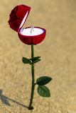 Έννοια του κιβωτίου λουλουδιών με το γαμήλιο δαχτυλίδι μέσα στοκ φωτογραφίες