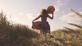 Έννοια του ξένοιαστων καλοκαιριού και της χαράς Τρεξίματα νέα γυναικών σε έναν τομέα με την ψηλή χλόη Ένα κορίτσι σε ένα αγροτικά φιλμ μικρού μήκους