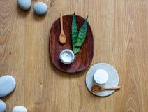 Έννοια του σπιτικού aloe συστατικού της Βέρα για την ενυδάτωση της κρέμας Στοκ φωτογραφίες με δικαίωμα ελεύθερης χρήσης