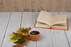 Έννοια του στηργμένος φλυτζανιού φθινοπώρου του τσαγιού με τα ζωηρόχρωμα φύλλα φθινοπώρου και του βιβλίου στον άσπρο ξύλινο πίνακ Στοκ φωτογραφίες με δικαίωμα ελεύθερης χρήσης