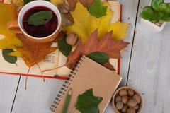 Έννοια του φθινοπώρου που στηρίζεται - φλυτζάνι του τσαγιού με το ζωηρόχρωμο leav φθινοπώρου Στοκ φωτογραφία με δικαίωμα ελεύθερης χρήσης
