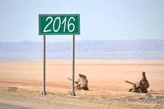 έννοια του 2016 Στοκ Φωτογραφίες