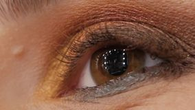 Έννοια των ευτυχών ματιών απόθεμα βίντεο