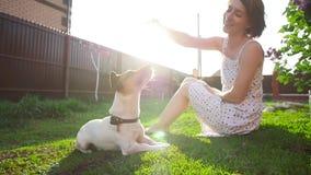 Έννοια των κατοικίδιων ζώων και της υπαίθριας αναψυχής Νέο παιχνίδι γυναικών με το τεριέ του Jack Russell σκυλιών απόθεμα βίντεο