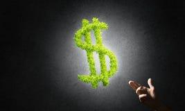 Έννοια των τραπεζικών εργασιών και της επένδυσης που παρουσιάζονται από το πράσινο σύμβολο δολαρίων στο συγκεκριμένο υπόβαθρο Στοκ Εικόνες