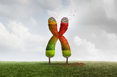 Έννοια υγείας γήρανσης Telomere ελεύθερη απεικόνιση δικαιώματος