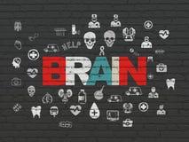 Έννοια υγειονομικής περίθαλψης: Εγκέφαλος στο υπόβαθρο τοίχων Στοκ Φωτογραφίες