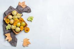 Έννοια φθινοπώρου πτώσης συγκομιδών Ώριμα juicy κίτρινα δαμάσκηνα Στοκ φωτογραφία με δικαίωμα ελεύθερης χρήσης
