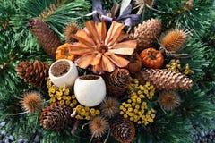 Έννοια φύσης φθινοπώρου όμορφες διακοσμήσεις φ&the Ζωηρόχρωμα λουλούδια φθινοπώρου στο νεκροταφείο - αποκριές Στοκ Εικόνες