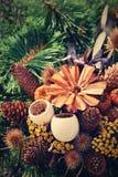Έννοια φύσης φθινοπώρου όμορφες διακοσμήσεις φ&the Ζωηρόχρωμα λουλούδια φθινοπώρου στο νεκροταφείο - αποκριές Στοκ Εικόνα