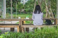 Έννοια χαλάρωσης: Η πίσω συνεδρίαση γυναικών άποψης χαλαρώνει στην ξύλινη καρέκλα στον υπαίθριο κήπο Στοκ Εικόνες