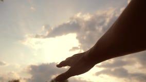 Έννοια χεριών θρησκείας στο υπόβαθρο μπλε ουρανού Τρόπος ζωής τα τεντώματα χεριών ατόμων στην πίστη και την ευδαιμονία Θεών απόθεμα βίντεο