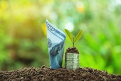 Έννοια χρημάτων αποταμίευσης με την ανάπτυξη σωρών και τραπεζογραμματίων νομισμάτων χρημάτων Στοκ εικόνες με δικαίωμα ελεύθερης χρήσης