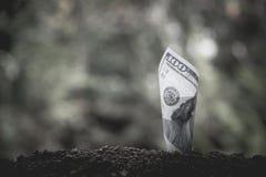 Έννοια χρημάτων αποταμίευσης με την ανάπτυξη τραπεζογραμματίων για την επιχείρηση Financi Στοκ φωτογραφία με δικαίωμα ελεύθερης χρήσης