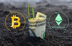 Έννοια Bitcoin και ethereum της αύξησης στοκ εικόνες