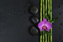 Έννοια SPA με τις πέτρες zen, το λουλούδι ορχιδεών και το μπαμπού στοκ φωτογραφία με δικαίωμα ελεύθερης χρήσης