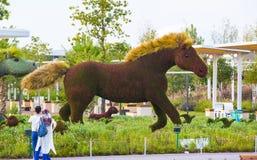 Έντομα και άνθρωποι ζώων αγαλμάτων που γίνονται από τις εγκαταστάσεις και τα χορτάρια Στοκ Εικόνα
