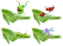 Έντομο στον κλάδο δέντρων πεύκων διανυσματική απεικόνιση