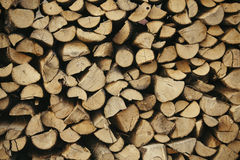 δέντρα αποκοπών Στοκ εικόνα με δικαίωμα ελεύθερης χρήσης
