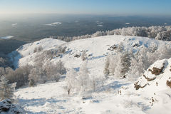 δέντρα ισχυρής χιονόπτωση&sigm Στοκ εικόνες με δικαίωμα ελεύθερης χρήσης