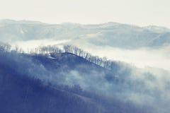 δέντρα σκιαγραφιών πρωινού τοπίων σπιτιών ομίχλης Στοκ Εικόνες