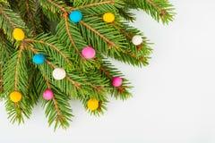Δέντρο και plasticine πεύκων Στοκ Φωτογραφίες