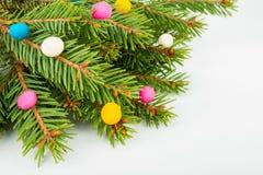 Δέντρο και plasticine πεύκων Στοκ φωτογραφία με δικαίωμα ελεύθερης χρήσης
