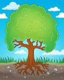 Δέντρο με την εικόνα 2 θέματος ριζών Στοκ Φωτογραφίες