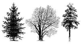 δέντρο σκιαγραφιών συνόλ&omicr Στοκ εικόνα με δικαίωμα ελεύθερης χρήσης