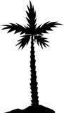 δέντρο σκιαγραφιών φοινι&kapp Στοκ εικόνα με δικαίωμα ελεύθερης χρήσης