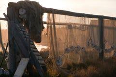 Ένωση διχτυού του ψαρέματος στο υπαίθριο υπόβαθρο ακροθαλασσιών ηλιοβασιλέματος στοκ εικόνα