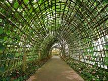 ένωση κήπων Στοκ Εικόνα