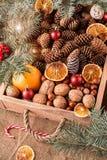 Ένωση μελοψωμάτων Χριστουγέννων πέρα από το ξύλινο υπόβαθρο Στοκ εικόνες με δικαίωμα ελεύθερης χρήσης