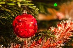 Ένωση μπιχλιμπιδιών Χριστουγέννων από έναν κλάδο χριστουγεννιάτικων δέντρων στοκ εικόνες
