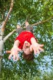 Ένωση παιδιών από ένα δέντρο που προσποιείται πέφτει Στοκ εικόνα με δικαίωμα ελεύθερης χρήσης